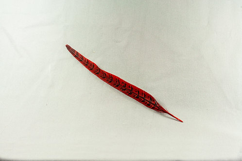 Fazant staart veer gekleurd  25 tot 29 cm