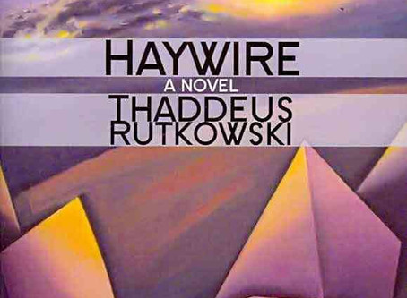Review of Haywire, a flash fiction novel, by Thaddeus Rutkowski