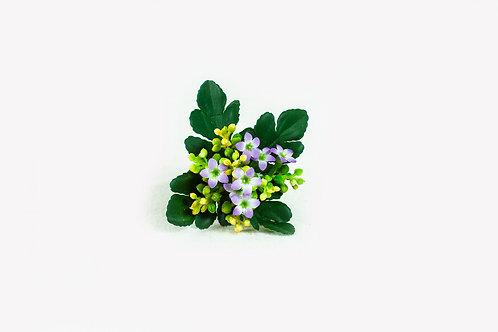 Kalanchoe  zijde bloem