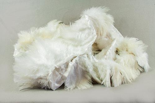 Mooie volle band met witte veren hoogte 8cm