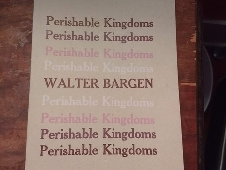 A review of Walter Bargen's Perishable Kingdoms, a chapbook of three tales