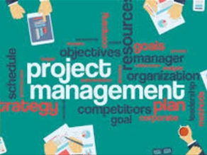 PROJECT MANAGEMENT PROFESSIONAL (PMP) IN A NUTSHELL
