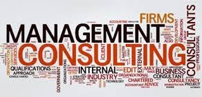 THE MANAGEMENT CONSULTANCY