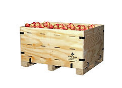 fruit box 2.jpg