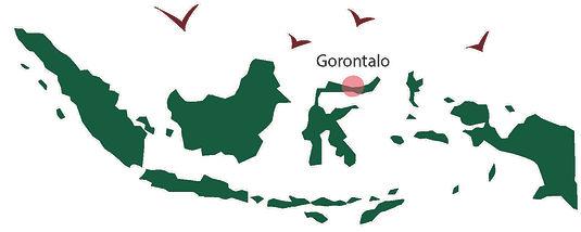 200527 otanaha map.jpg
