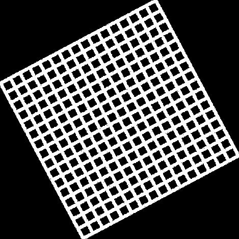 Vector (6).png