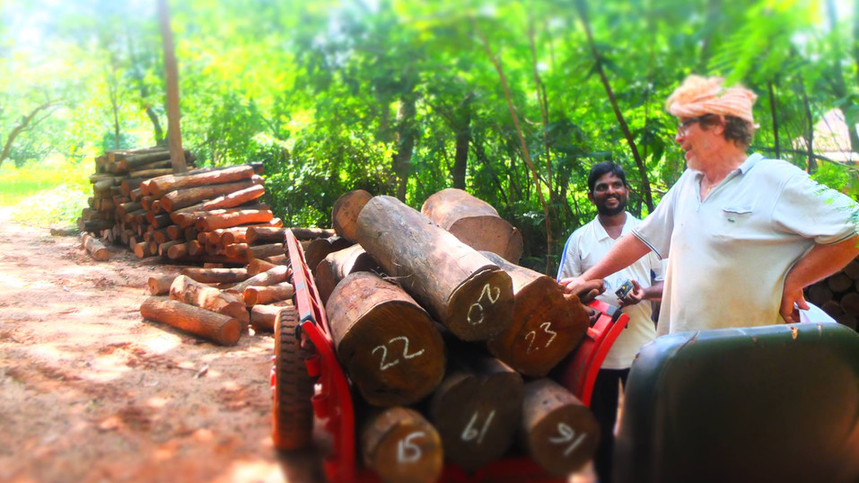 Susutainably harvest from smridhi forest