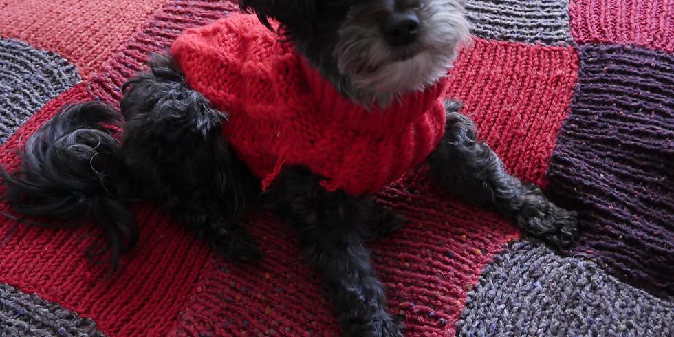 Dog Friendly Winter Warmer