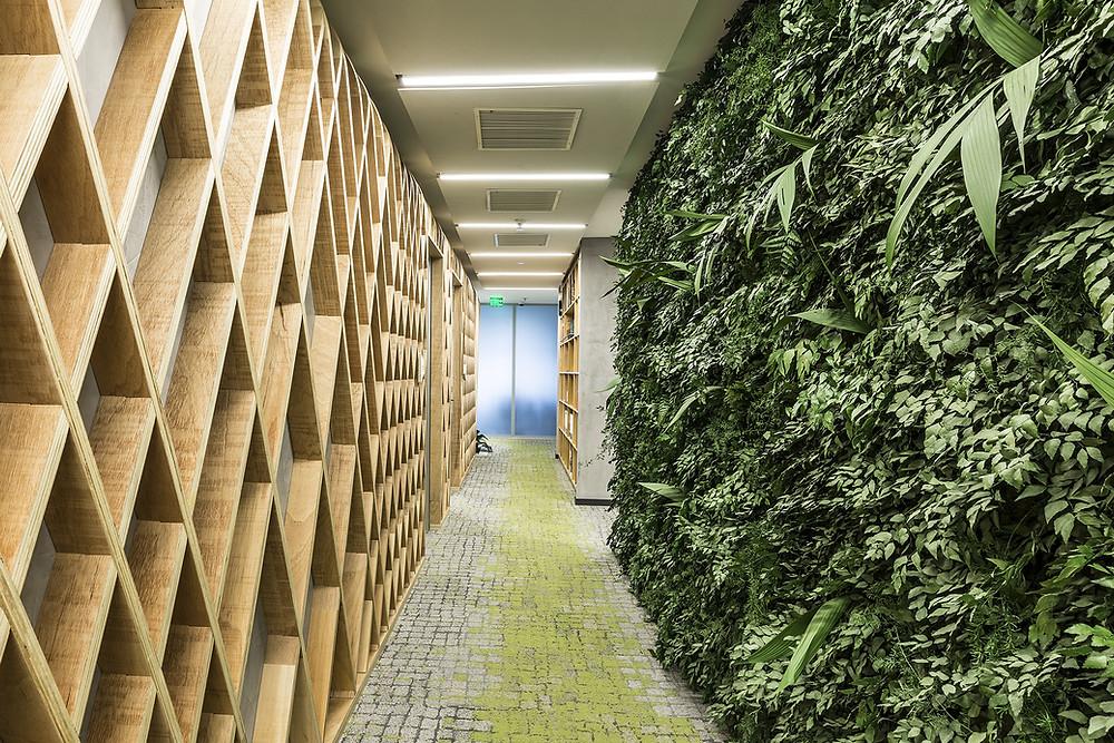 Paisagismo Corporativo com Plantas Preservadas