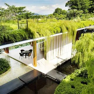 Telhado Verde.jpg