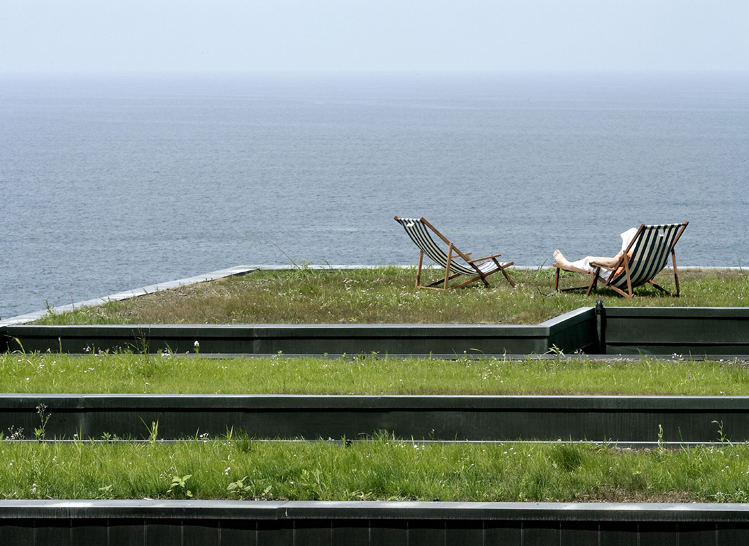 leis telhado verde