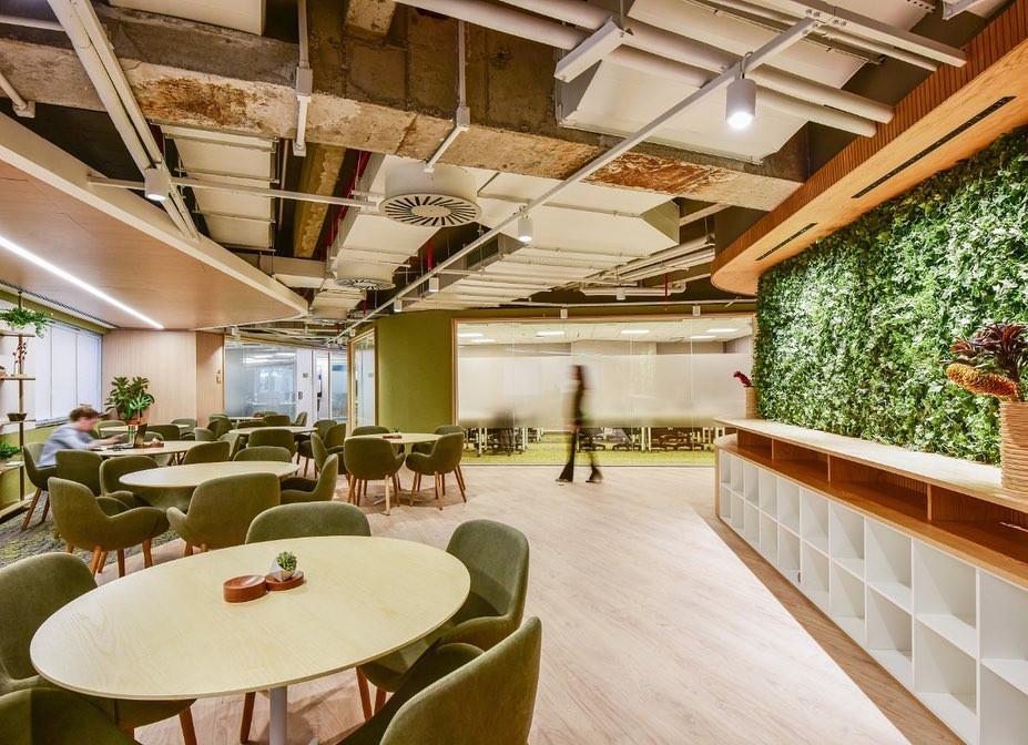 Design Biofílico parede verde