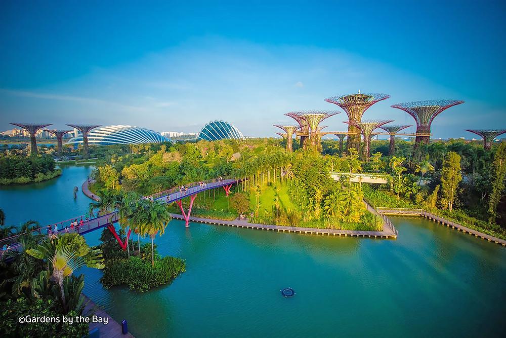 Arquitetura Biofilica Singapura