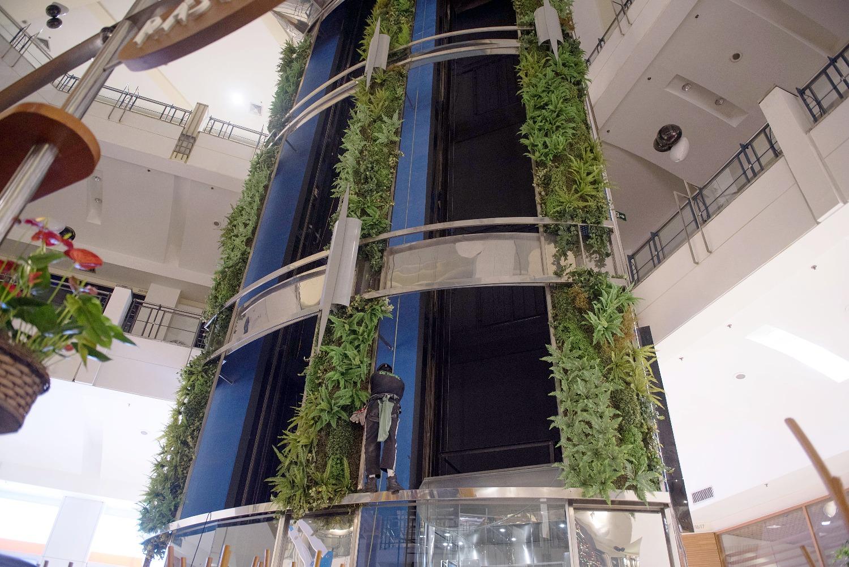 Permanent Vertical Garden