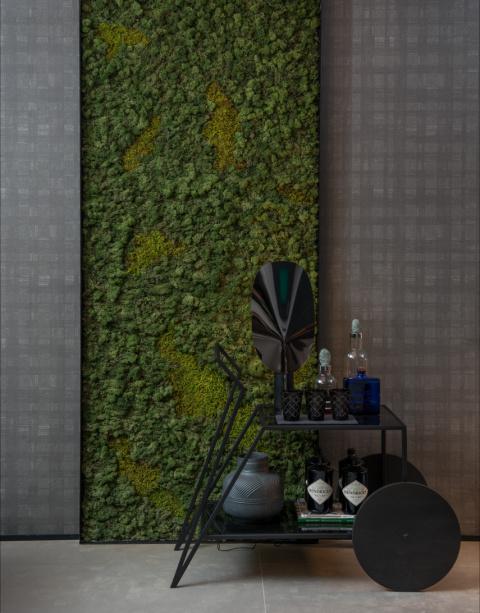 Moss Vertical Garden