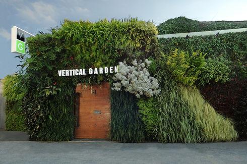 Jardim Vertical Natural e Parede Verde Fachada da Empresa