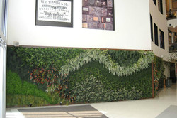 Painel Jardim Vertical Artificial