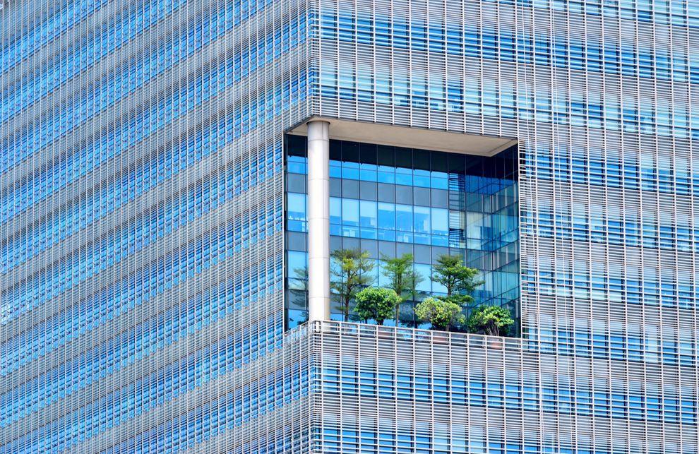 Arquitetura Biofilica em centros urbanos