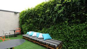 Jardins Verticais: tudo o que você precisa saber!