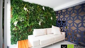 Plantas Artificiais e Permanentes, elas estão mais reais do que você imagina!