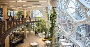 Tudo sobre arquitetura biofílica e sua importância
