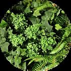 Detalhe de Jardim Vertical Artificial