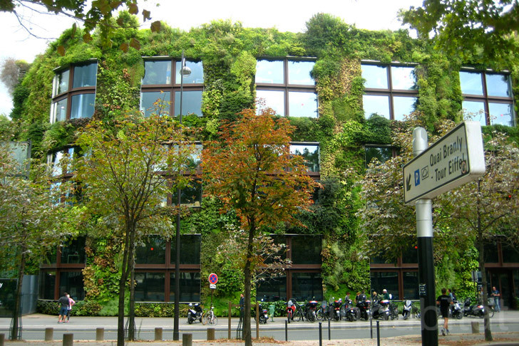 Jardins Verticais LEED