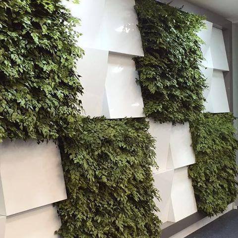 Vertical Garden_#vertical #verticalgarden #gardening #gardens #green #construction #workhard #landsc