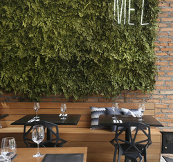 Jardim_vertical_Mez_restaurante1_edited