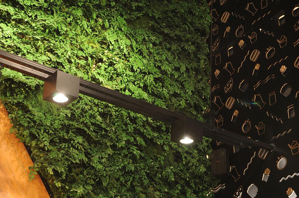 Plantas Preservadas em Restaurante