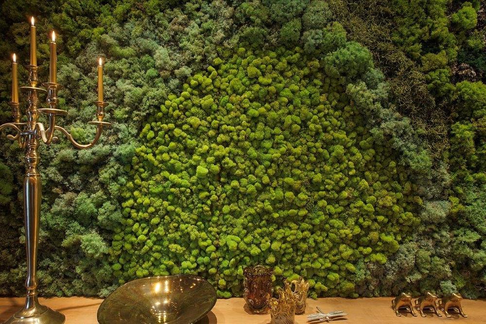 Decoração em Musgo Moss: Projeto da Vertical Garden na mostra Campinas Decor.