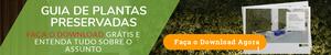Faça o Download do Catálogo de Plantas Artificiais