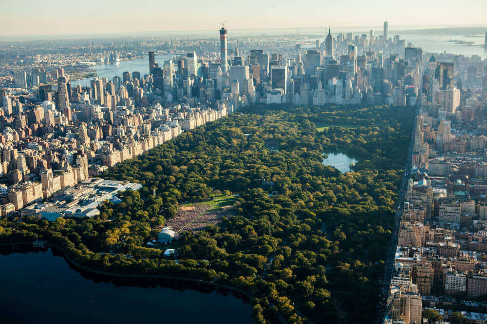 Arquitetura Biofilica Nova York