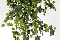 Vertical_Garden_-_JVAI2_2_-_foto_Sim∆o_Salom∆o-min
