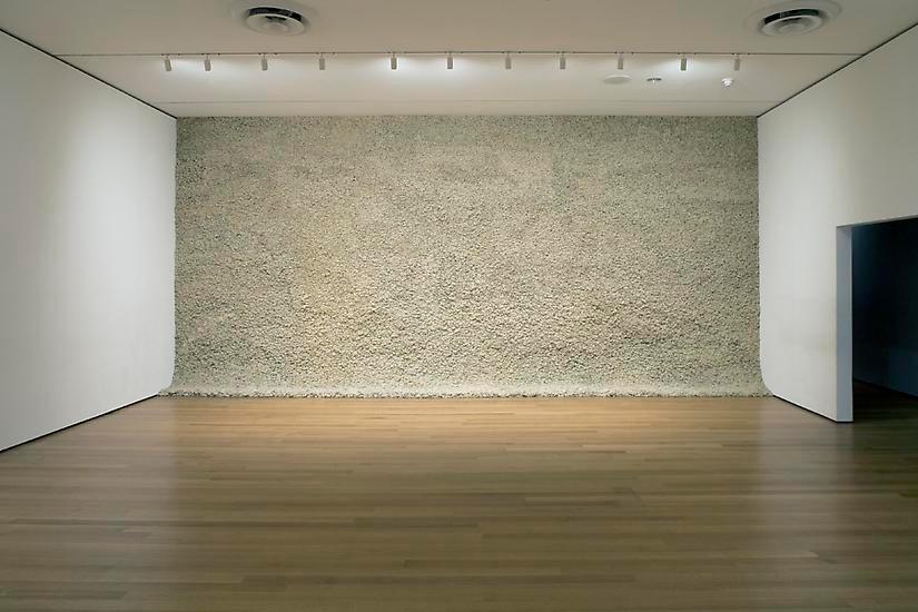 Musgo Moss Wall Branco