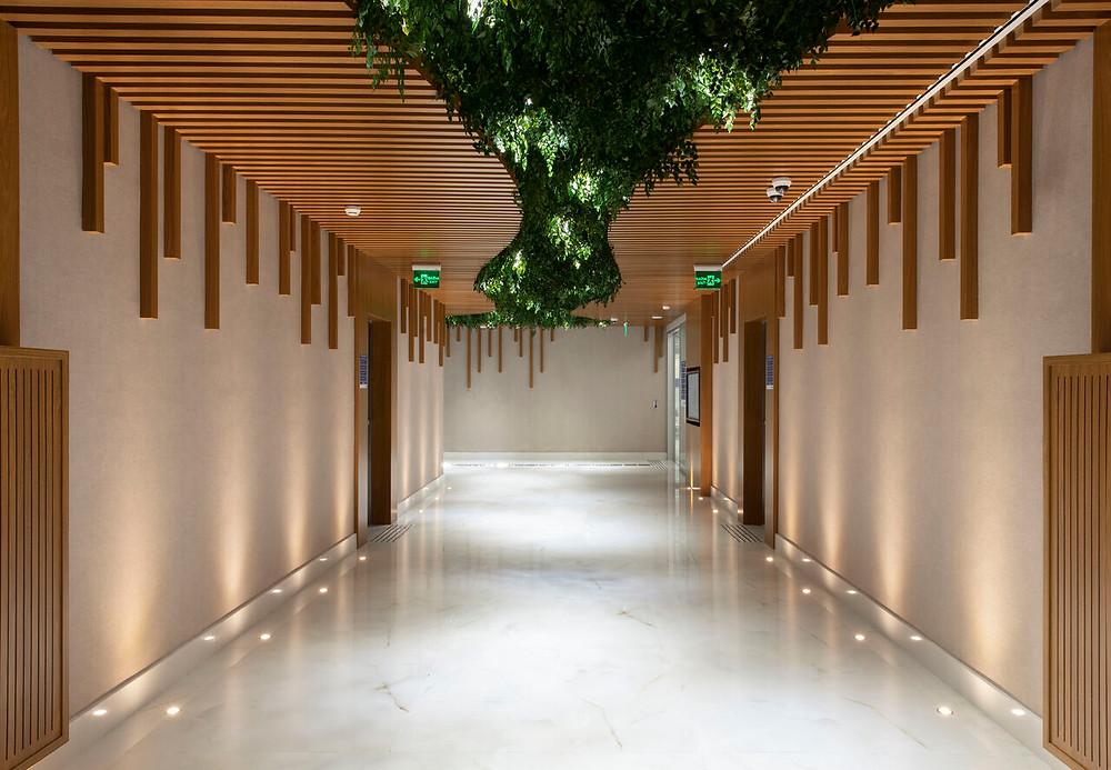 Arquitetura Humanizada e Sensorial