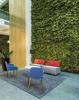 Jardim Vertical com Plantas Preservadas-