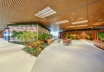 Paisagismo Vertical Garden Orçamento