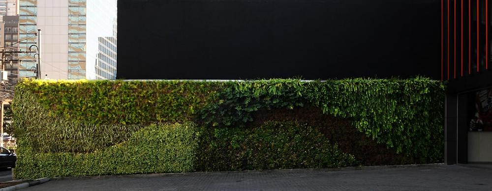 Muro verde loja mclaren