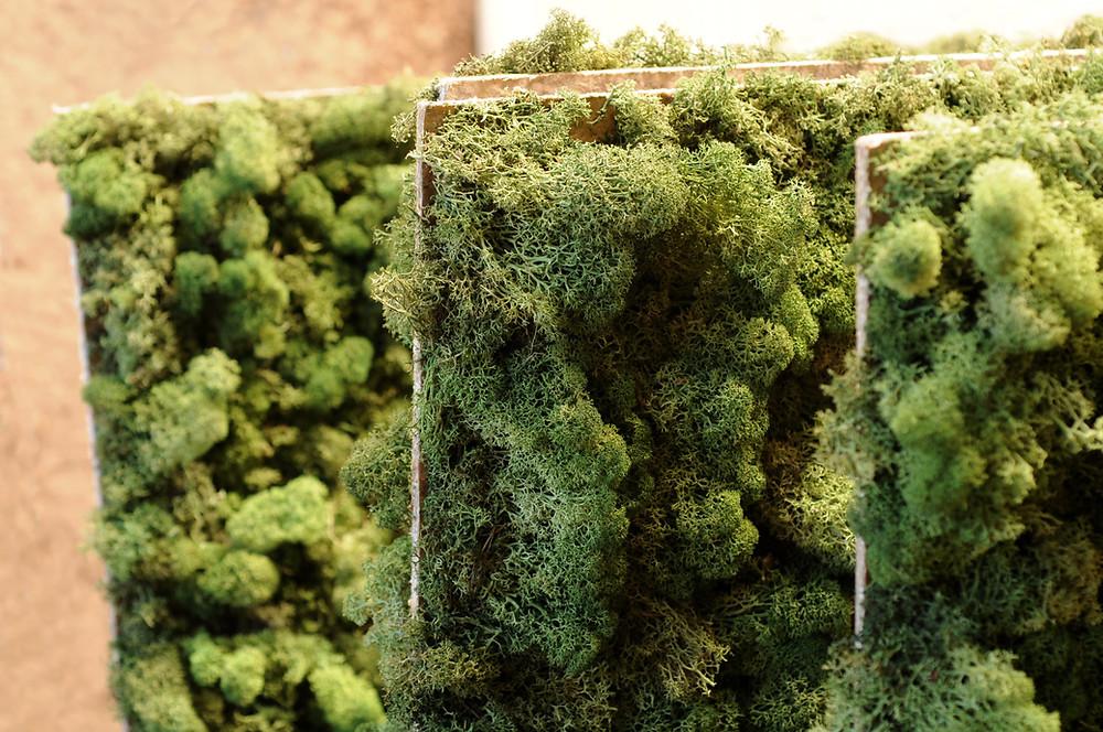 Preserved Moss Panel