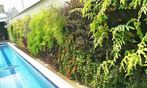 Foto Jardim Vertical Exterior