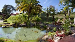 Características do design biofílico: uso da água e lagos na arquitetura
