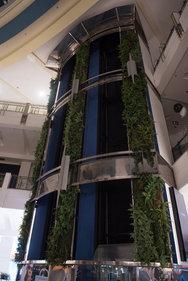 Jardim Vertical Shopping Villa Lobos