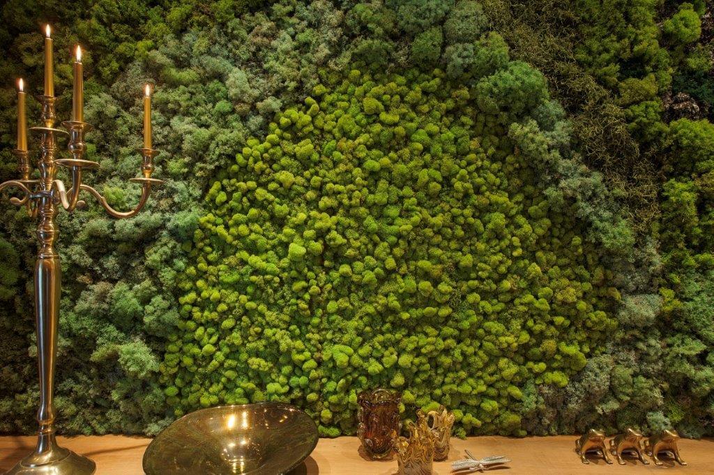 Moss Living Wall