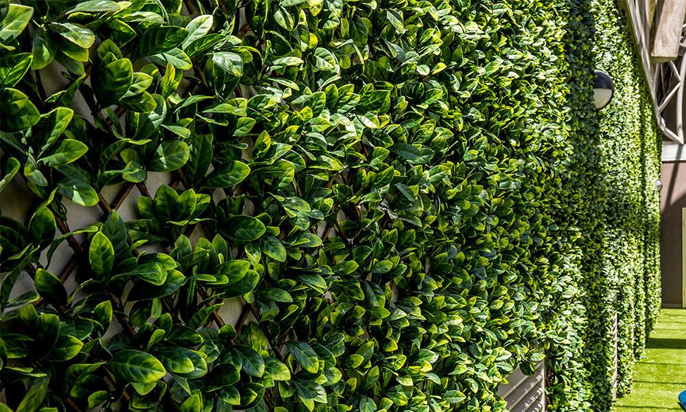 Green Wall Artificial