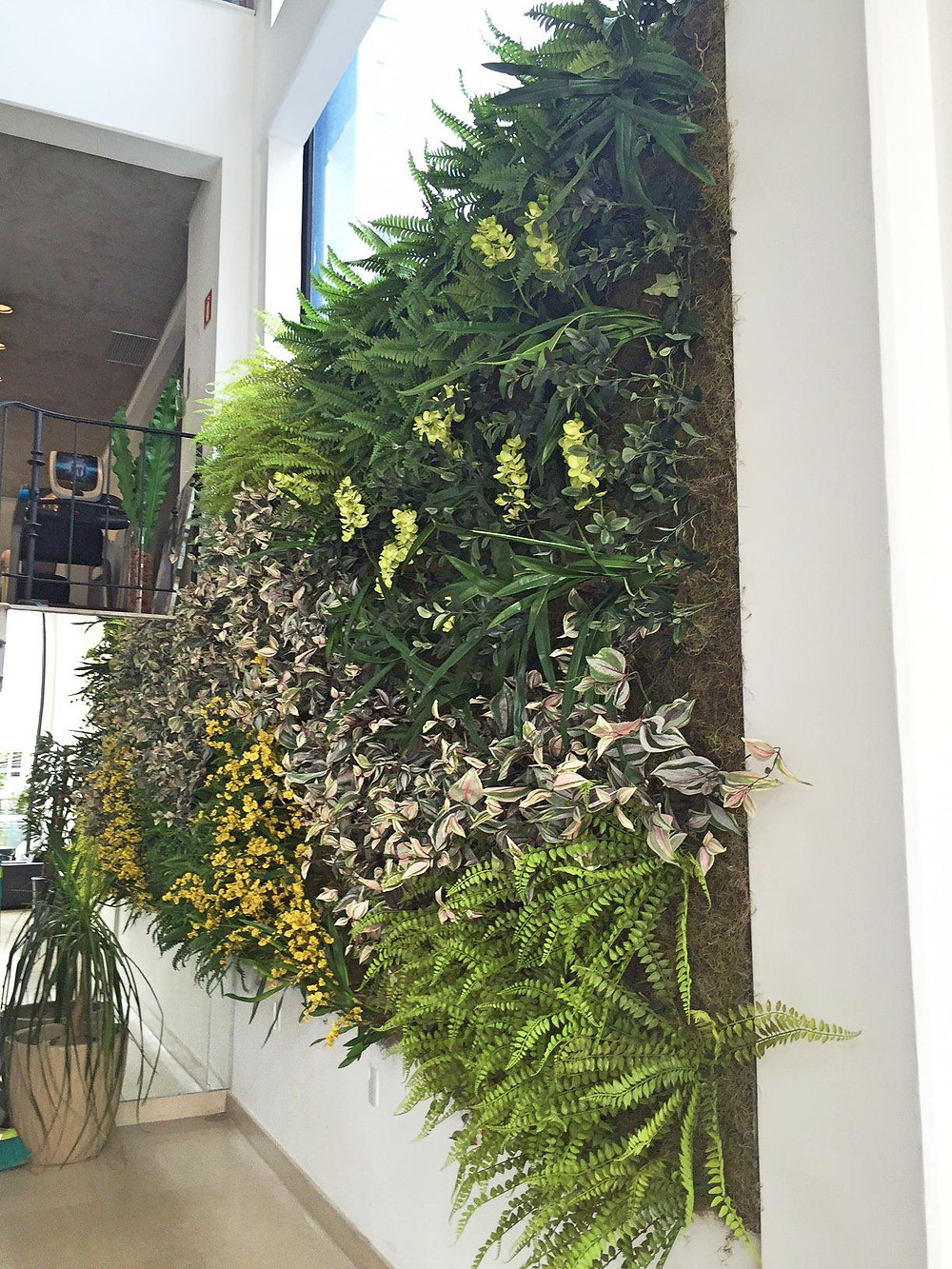Jardim Vertical em Academia