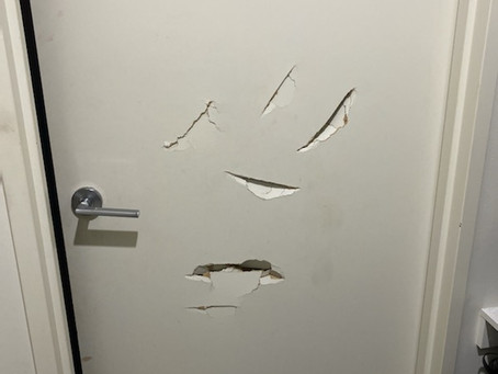 Don't replace a Damaged hollow door....