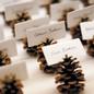 Wedding Decor | Winter Elements