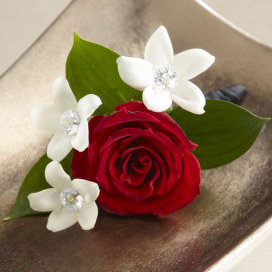 Love & Purity Boutonniere
