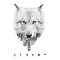 Quincy_Davis_Remedy_Album_Cover.jpeg